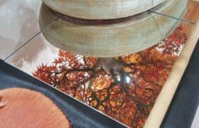 Nationale Bonsaiausstellung Hausen am Albis (5)